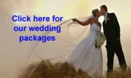 Corporate / Weddings - Chartered Services